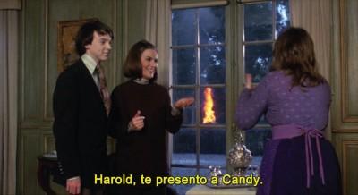 Harold and Maude3